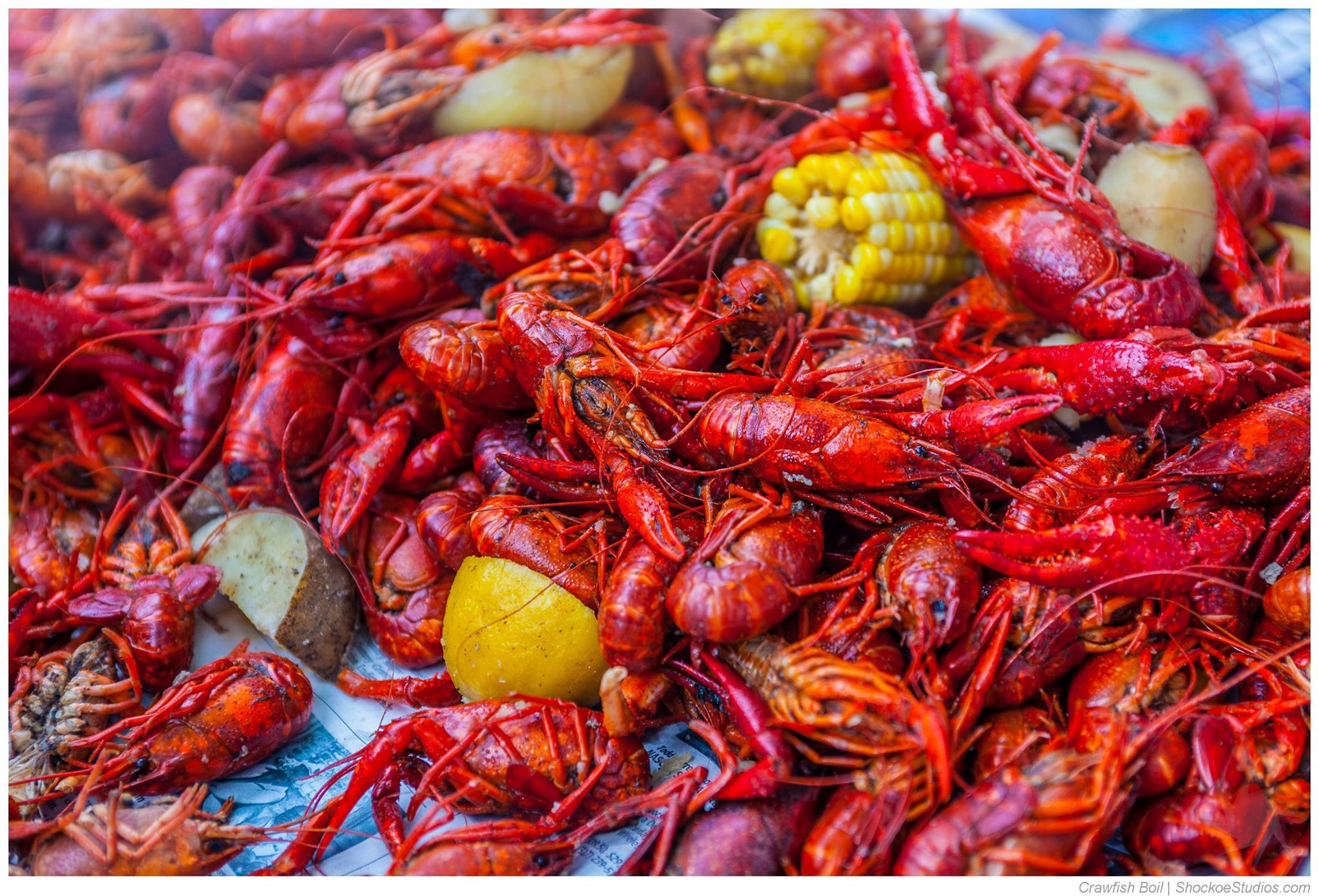 Crawfish Boil on 6/22
